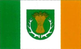 Flaga Gminy Ruja